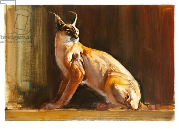 Arabian Caracal, 2010 (oil on paper)