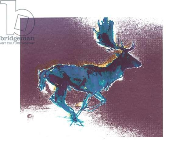 Fallow Buck (blue/yellow shadow), 2015, (screen print)