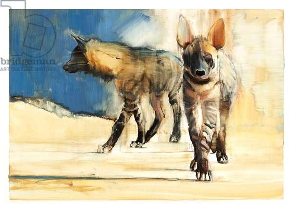 Striped Hyaenas, 2010 (oil on paper)