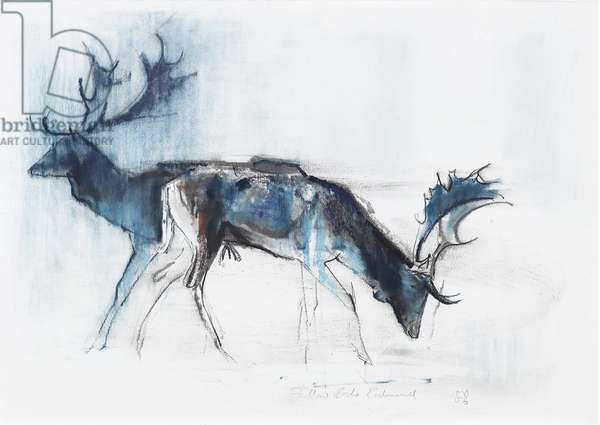 Fallow Bucks, Richmond, 2006 (charcoal & conte on paper)