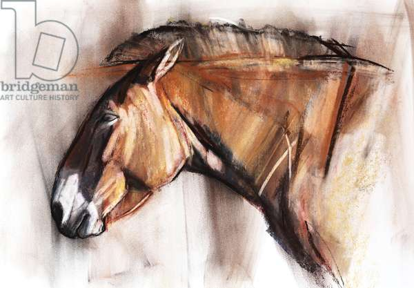 Resting Horse, 2013, (pastel and charcoal on paper)
