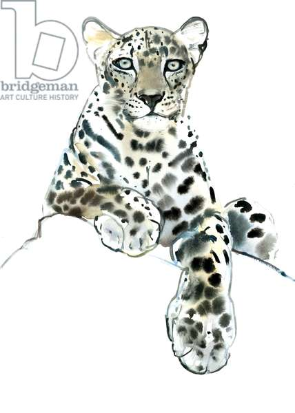 Direct (Arabian Leopard), 2015, (watercolour and gouache on paper)