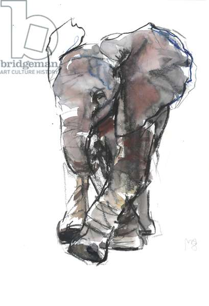 Baby Elephant Study, 2018, (mixed media on paper)