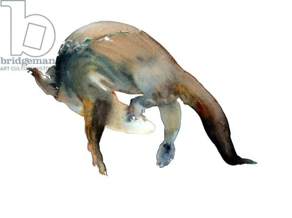 Tail Turn, 2014, (watercolour on paper)
