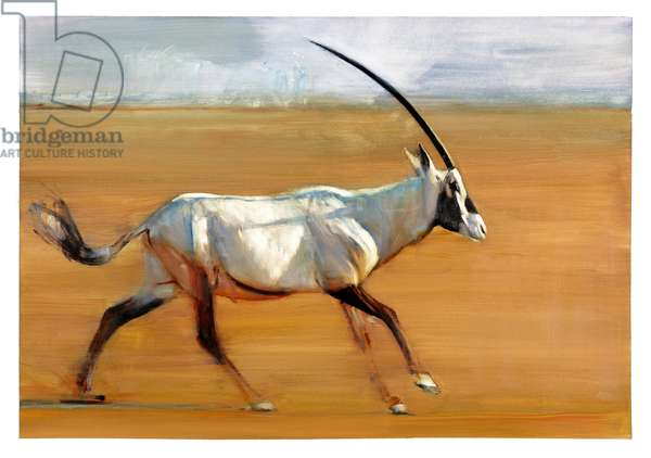 Galloping Oryx, 2010 (oil on paper)