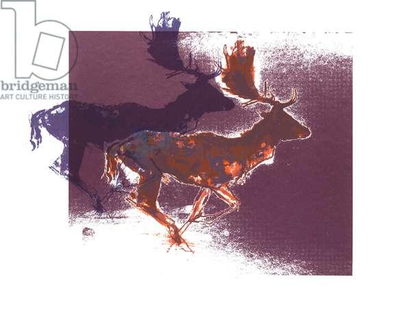 Fallow Bucks (orange/lilac), 2015, (screen print)