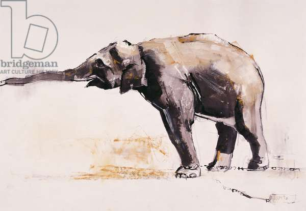 Indian Elephant, Khana (mixed media on paper)