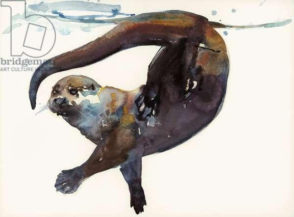 Otter Study II -'Talisker' (w/c on paper)