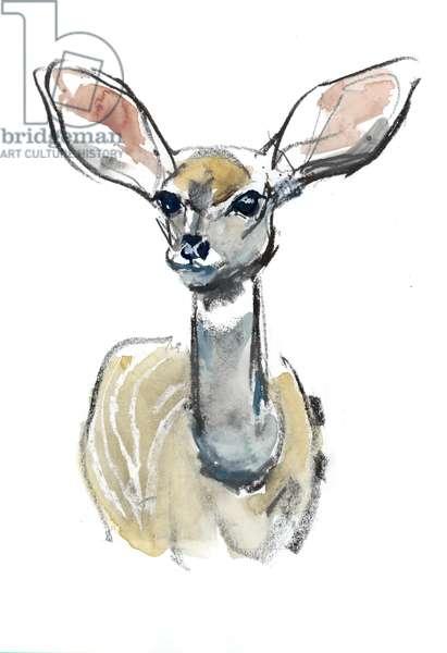 Kudu Fawn, Sarara, 2018, (mixed media on paper)