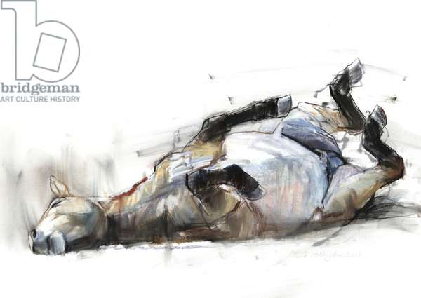 Rolling Rolling Rolling, 2011, (charcoal, conté, and pastel on paper)