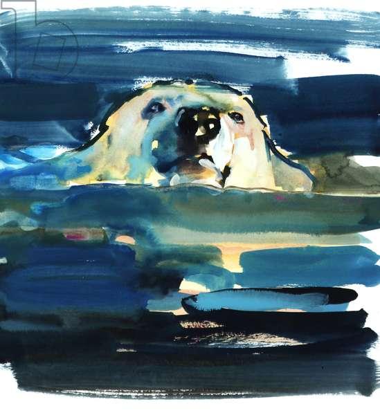 Arctic Swim, 2016, (watercolour on paper)
