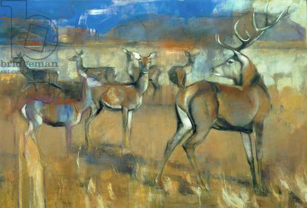 Gathering Deer, 1998 (mixed media and collage on paper)