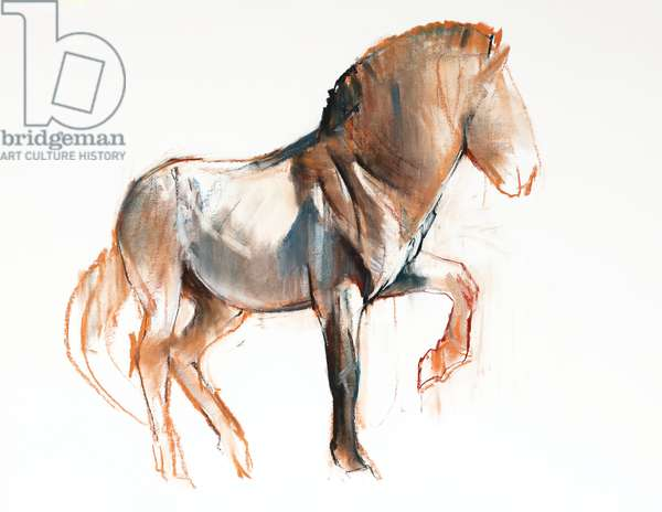 Turning (Przewalski), 2013, (pastel and charcoal on paper)