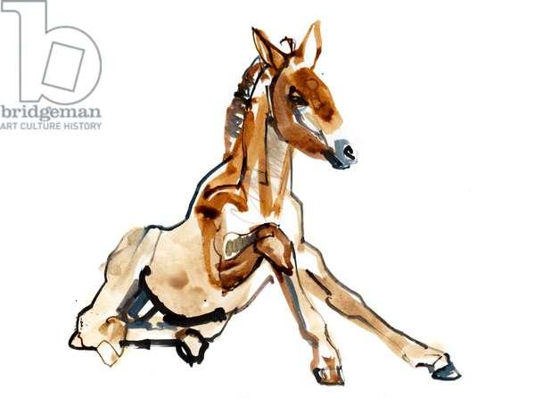Ochre Foal (Przewalski), 2013 (sennelier ink, watercolour and gouache)