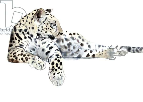 Long (Arabian Leopard), 2015, (watercolour and gouache on paper)