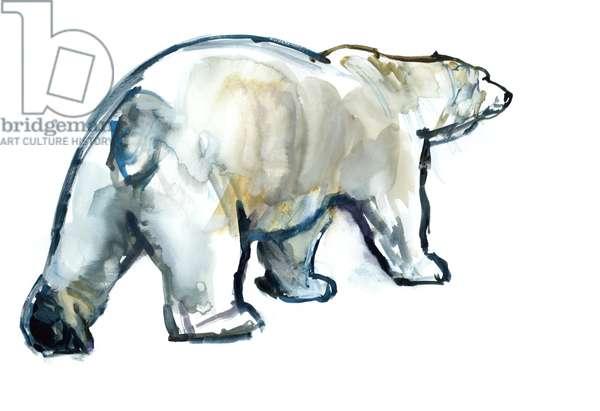 Glacier MInt (Polar bear),2013,(watercolour and gouache on paper)
