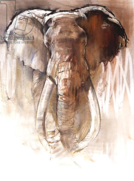 Bull Elephant, 2018, (pastel and conté on paper)