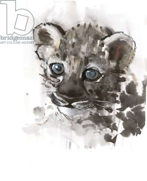 Blue Eyes (Arabian Leopard Cub), 2008 (w/c on paper)