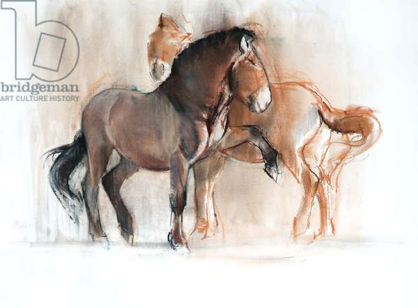 Two (Przewalski), 2013, (pastel and charcoal on paper)