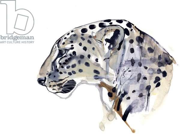 Profile (Arabian Leopard), 2008 (w/c on paper)