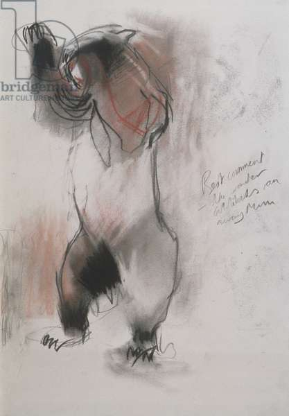 Grizzly, 1995 (charcoal, graphite and conte on paper)