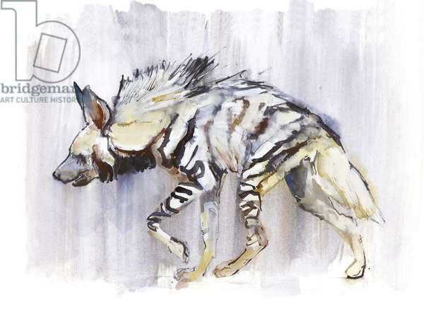 Striped Hyaena, 2010, (watercolour on paper)