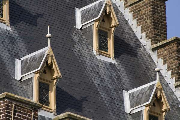 Detail of dormer windows in the roof (photo)