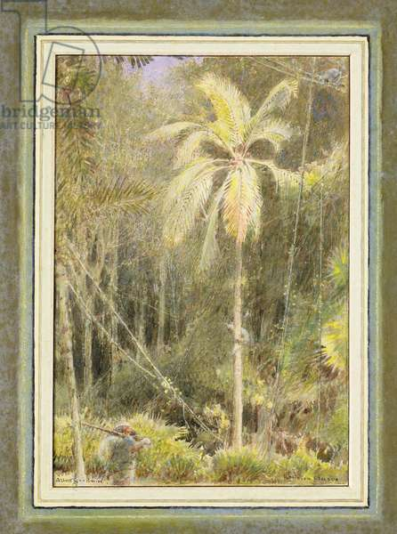 Robinson Crusoe (w/c on paper)