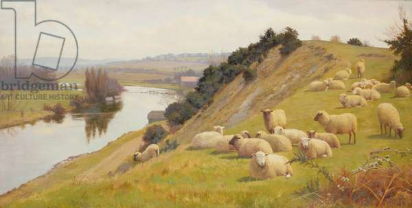 A Riverside Pasture  with Sheep (oil on canvas)