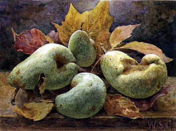 Odd and Even (Pears)