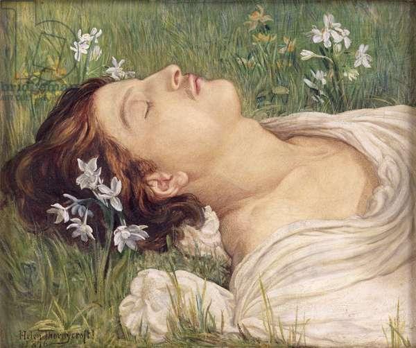 Narcissus, 1876 (w/c)