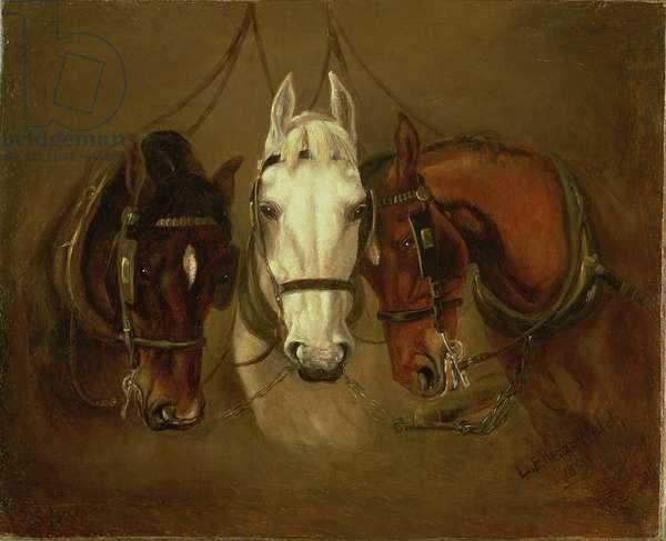 Cart Horses, 1891
