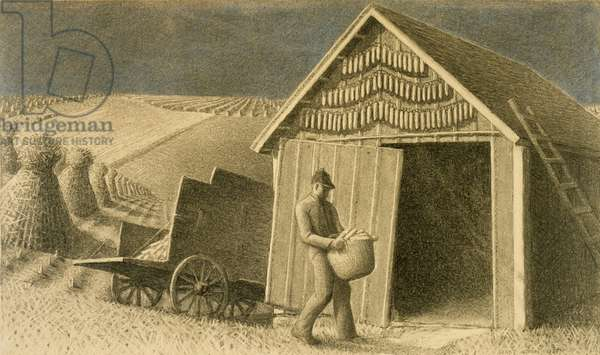 Seed Time and Harvest, 1937 (charcoal drawing)