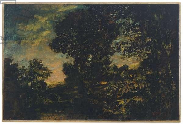 Russett Trees (oil on canvas)