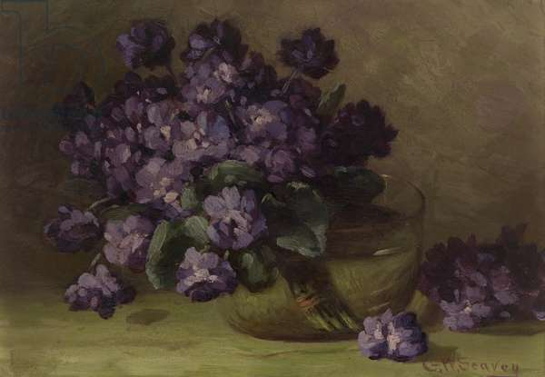 Violets (oil on canvas)