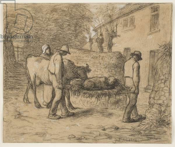 Bringing Home the Newborn Calf, c.1857 (charcoal with white heightening on paper)