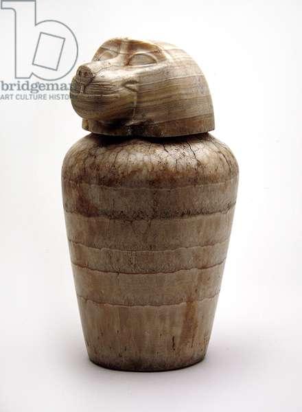 Canopic Jar, New Kingdom, probably 20th Dynasty, c.1198-1085 BC (alabaster)