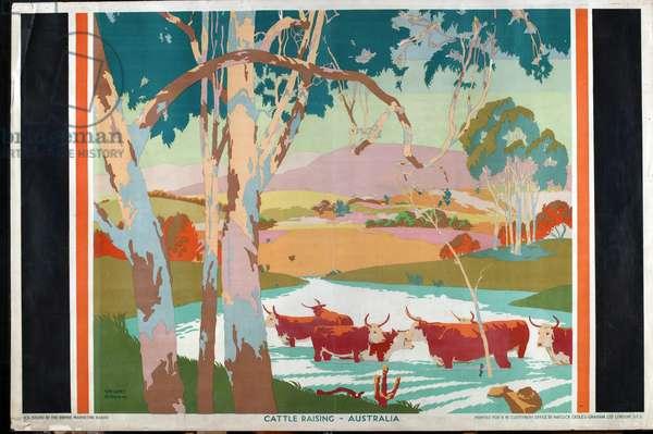 Cattle Raising - Australia, 1927 (colour litho)