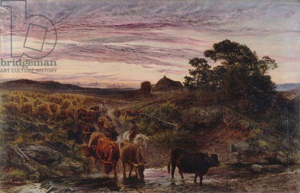 Cattle Fording a Stream, 1862 (oil on canvas)