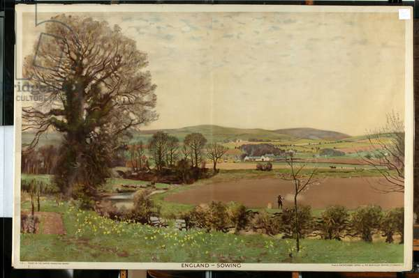 England - Sowing, from the series 'The Home Countries First' (colour litho)