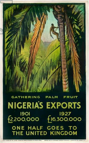 Nigeria's Exports - Gathering Palm Fruit (colour litho)