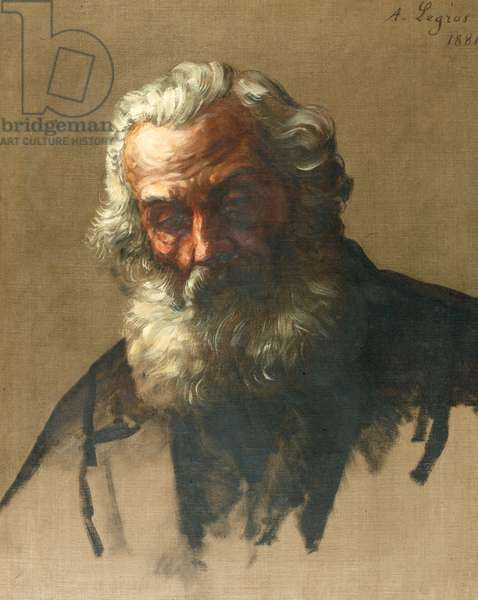 Head of an Old Man, 1881 (oil on canvas)