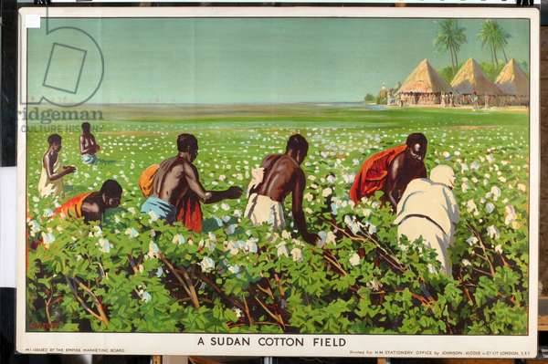 A Sudan Cotton Field, from the series 'Empire Trade is Growing' (colour litho)