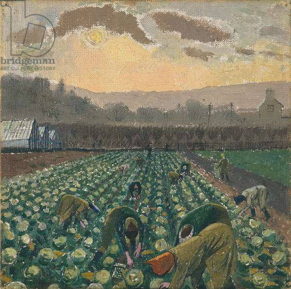 Sprout Picking, Monmouthshire, 1941-44 (oil on canvas)