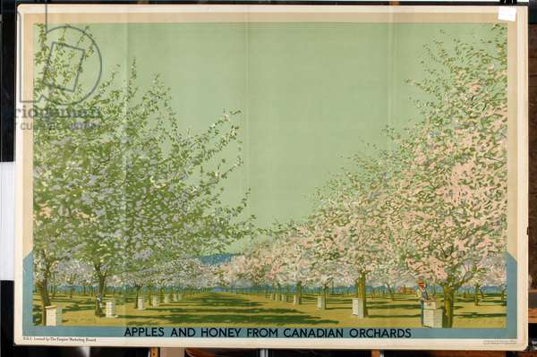 Apples and Honey from Canadian Orchards (colour litho)