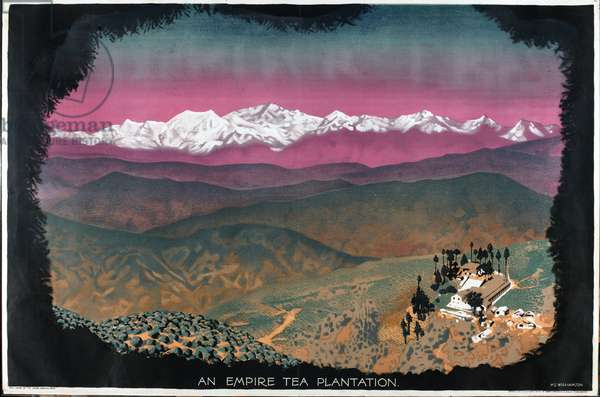 An Empire Tea Plantation, from the series 'Drink Empire Grown Tea' (colour litho)