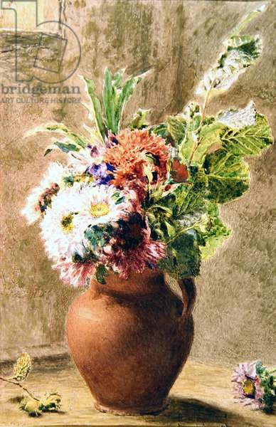 A Pot of Asters, c.1840 (w/c, bodycolour & pencil on paper)