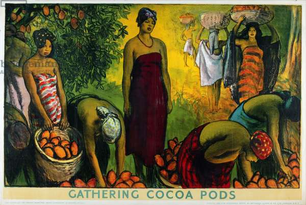 Gathering Cocoa Pods, from the series 'What Gold Coast Prosperity Means' (colour litho)