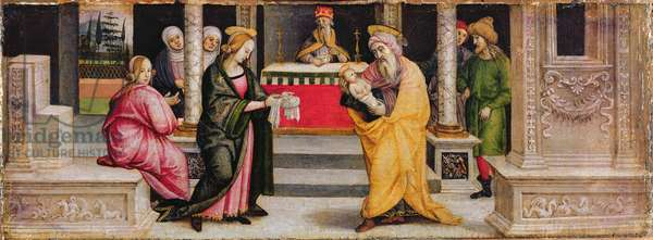 The Presentation in the Temple, c.1510 (tempera on panel)