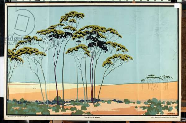 Australian Wheat, from the series 'Australia's Wealth of Wheat and Wool' (colour litho)